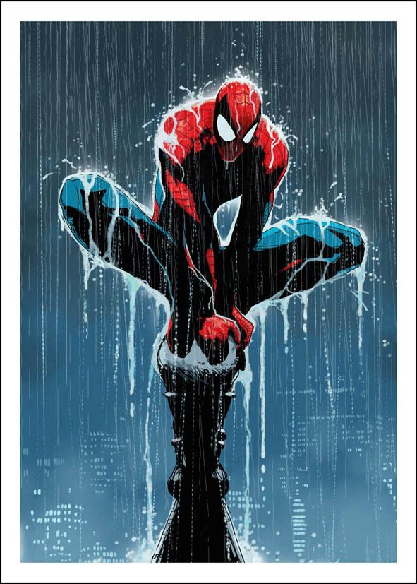 SPIDER MAN RAIN - canvas print - self adhesive poster - photo print